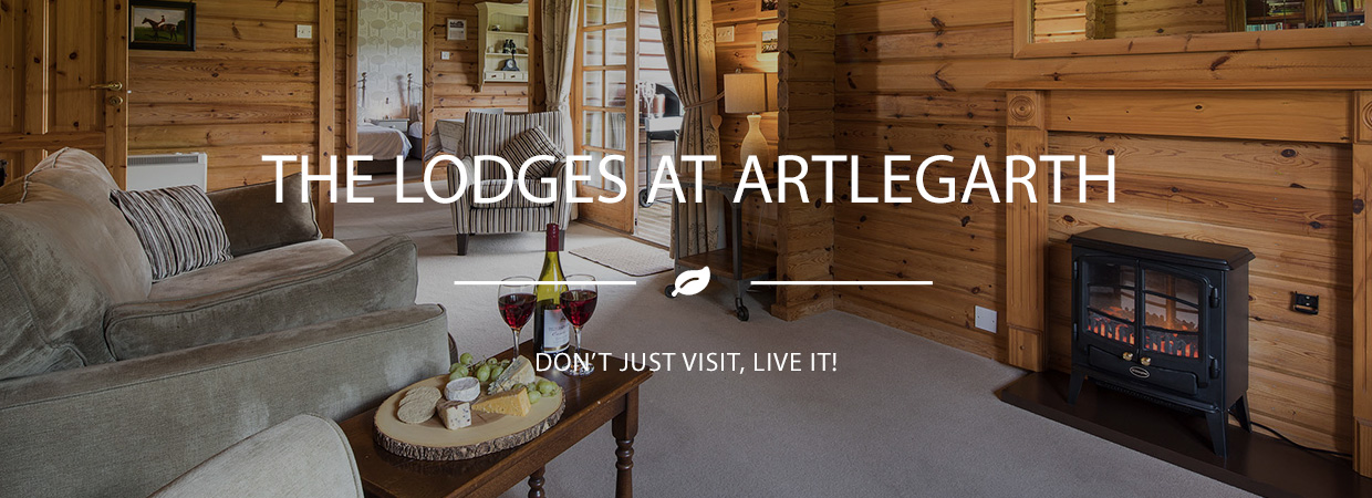 The Lodges at Artlegarth Happy Days