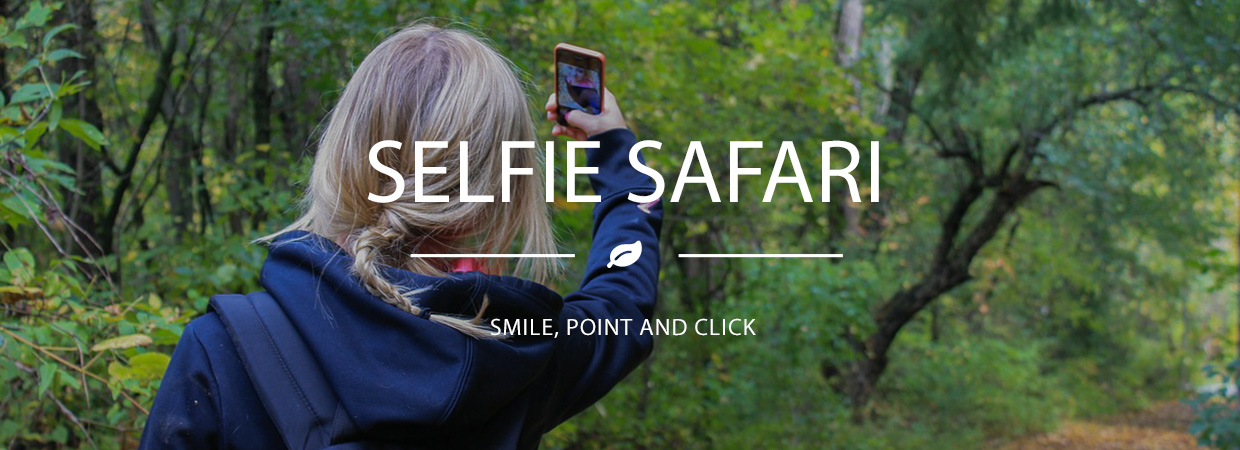 Selfie Safari Happy Days Tour