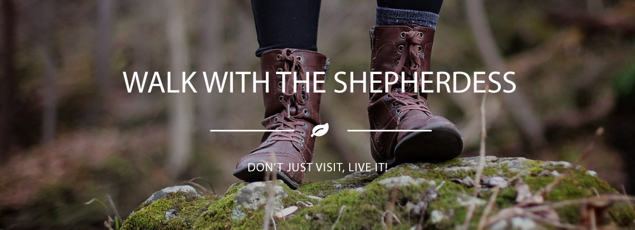 Walk with the shepherdess experience happy days